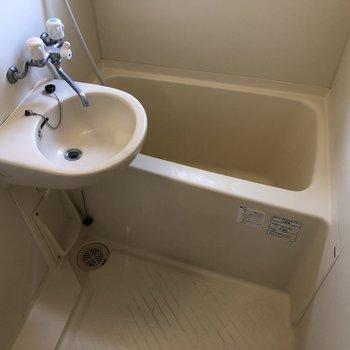 お風呂と洗面台一緒です