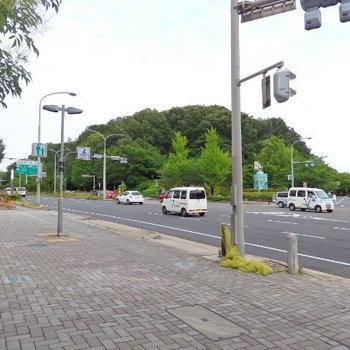 駅を降りるとこの環境。名古屋の中でも、これだけ緑のある環境はココか鶴舞くらい(※写真は前回募集時のものです)