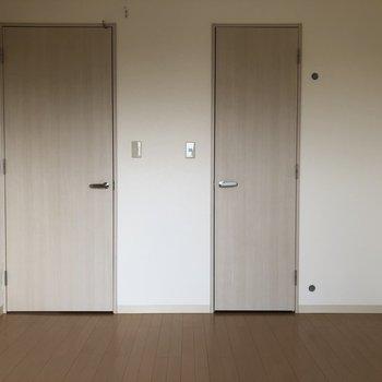 【洋室6.1帖】何の扉だろう?※写真は通電前のものです