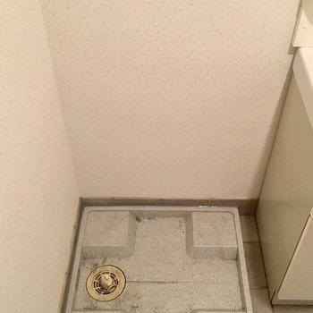 洗面台の隣に洗濯機置場(※写真は2階の同間取り別部屋のものです)