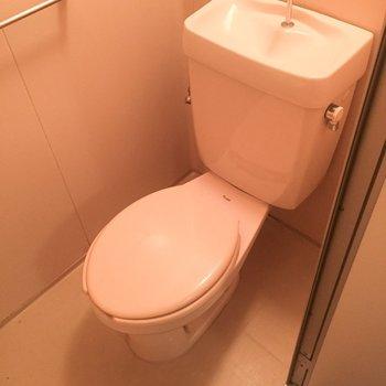 玄関そばにトイレです。