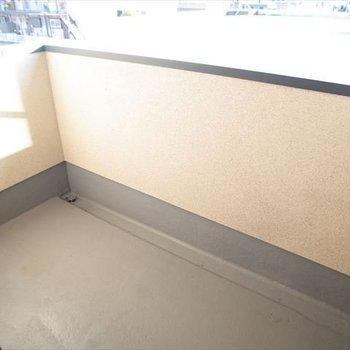 バルコニーはそこまで大きくないかも※写真は1階の同間取り別部屋、清掃前のものです