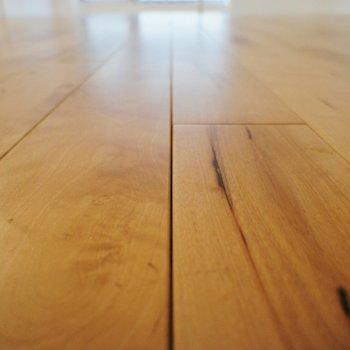 さらりと無垢床です!※写真は前回募集時のものです