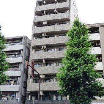 クレアシオン新中野