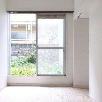 窓から緑が見えるとホッとするなぁ〜(※写真は清掃前のものです)