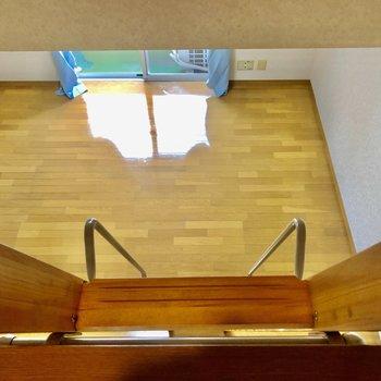 下を見下ろせばお部屋全体が見えます