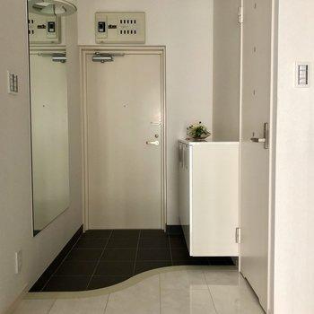 特徴的な玄関(※通電前の写真です)