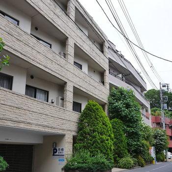 緑が植わったマンションです。