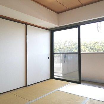 畳のいい香りがしてきそうです※写真は5階の同間取り別部屋のものです