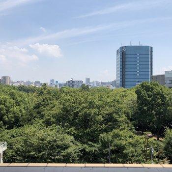 大きな窓からの眺望。公園行きたくなる!※写真は6階の同間取り別部屋のものです
