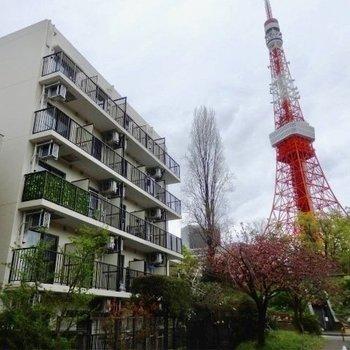 東京タワーがすぐそばに!!