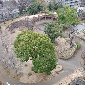 下を見ると大森貝塚遺跡公園が。