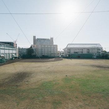 目の前は東京農大のグラウンド!スカッと抜けた青空が気持ち良い!