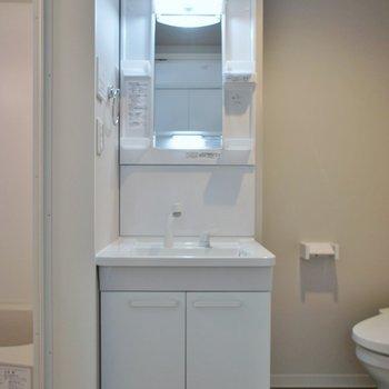 アメセパタイプの洗面所
