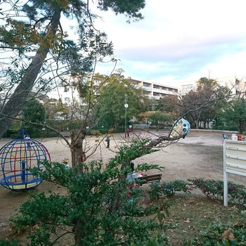 周辺】近くの公園、子どもたちの元気な姿が見えます