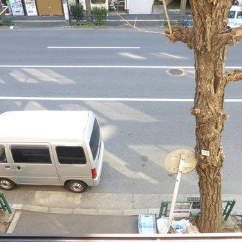 大通り沿いなので少し音が気になるかも。。。