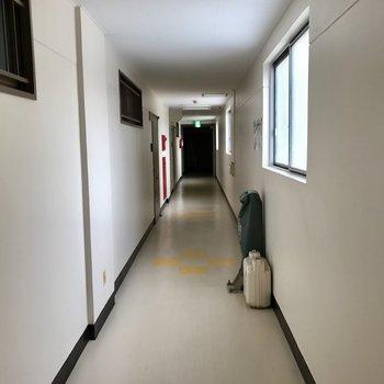 廊下、室内なので温かい!