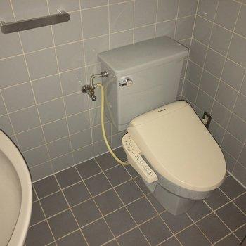 トイレの正面にはブラインドカーテンがあります!※フラッシュを使用して撮影しています