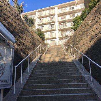 この階段を登った先に見える建物です。