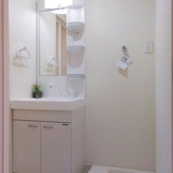 脱衣所は洗面台と洗濯機が置ける広さ。