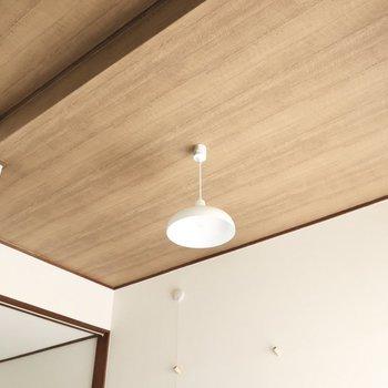 天井も木目貼り、ペンダント照明付きです