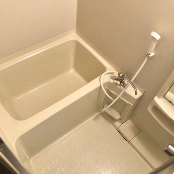 こちらが浴室。