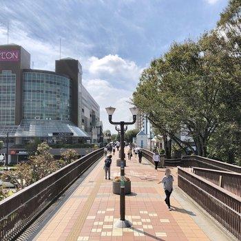 駅前の通りは緑もあり、ゆったりとした雰囲気。