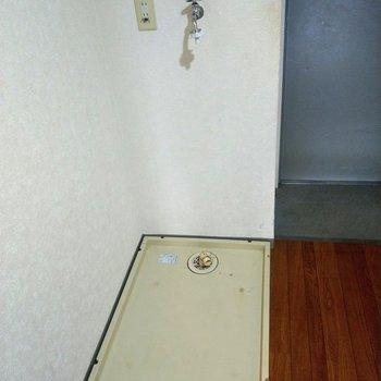 玄関横に洗濯機。帰ってそのまま洗濯物をぽい!※写真は4階の反転間取り別部屋のものです