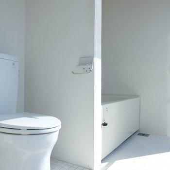 トイレの奥にバスルーム※写真は同じ間取り3階別部屋のものです