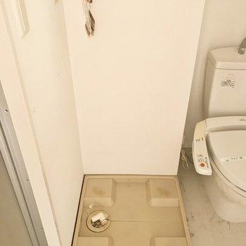洗濯パンはトイレとお風呂の間に。