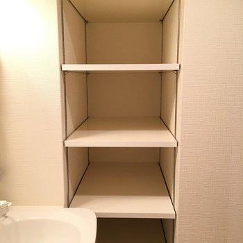 洗面台横にこんな奥行きのある収納が!扉はないのでボックスを揃えてきちんと感を出そう。※写真は11階の同間取り別部屋のものです