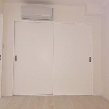【5.6帖洋室】収納たんまりクローゼット。※写真は通電前のものです。フラッシュをたいています