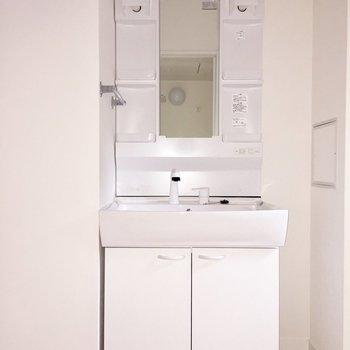 立派な洗面台※写真は通電前のものです。