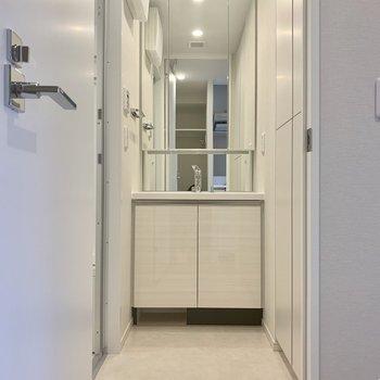 大きい鏡でセットがしやすい※写真は4階の同間取り別部屋のものです