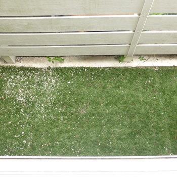 窓外には人工芝が敷かれてます。通用口から出て洗濯物も干せますよ!