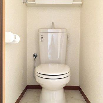 ウォシュレットはないけどとっても清潔感のあるトイレ。
