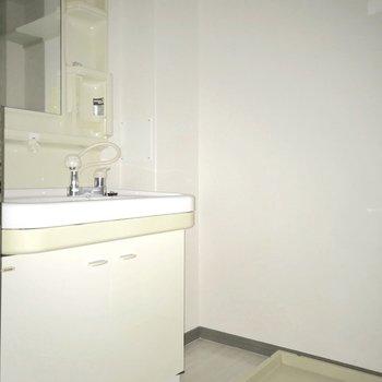 脱衣所には独立洗面台。嬉しいポイント!(※フラッシュ撮影しています)※写真は5階の同間取り別部屋のものです