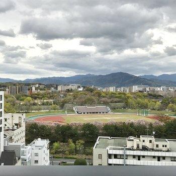 陸上競技場が見えますね。素敵な眺めだ〜。