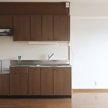 どっしり重厚感あるキッチン。横には両開きの冷蔵庫も置けますね