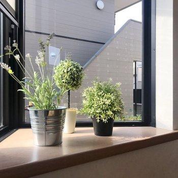 三角の出窓にはグリーンを。光をたくさん浴びて植物も嬉しそう〜(※写真の小物は見本です)