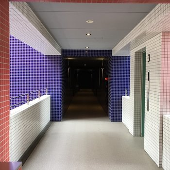 共用スペースもスタイリッシュ!このお部屋は青の方です。