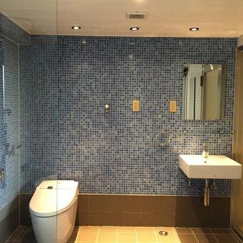 高級ホテルのような・・・青いタイルが素敵。※写真は5階の反転間取り別部屋のものです