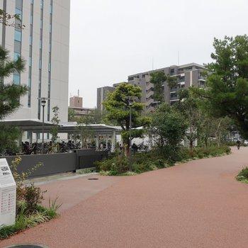 マンションの前には遊歩道。駅までゆっくりお散歩もいいですね♥