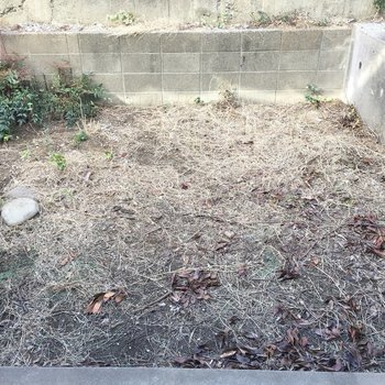 専用のお庭!何を育てようかなあ。 ※写真は前回募集時のものです
