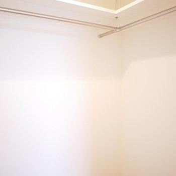 ウォークインは洋服以外にも季節のモノが収納できそう(※写真は3階の同間取り別部屋のものです)