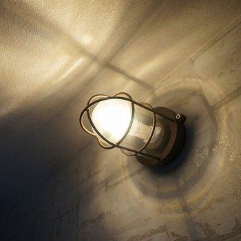 この照明、、めっちゃいい!!