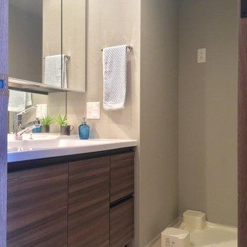 サニタリーですね。大きな洗面台!※写真は5階の反転似た間取りの別部屋のものです