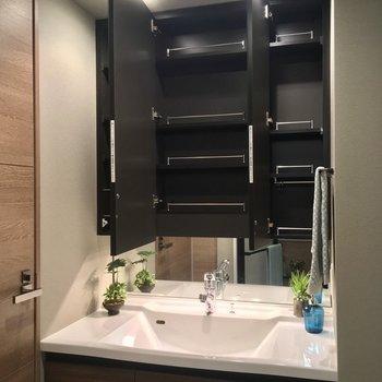 モチ、鏡の中は収納だよ〜ん※写真は5階の反転似た間取りの別部屋のものです
