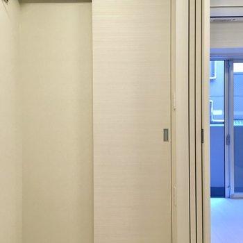 収納のサイズは…※写真は5階の同間取り別部屋・前回募集時のものです