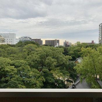 眺望は住吉神社。贅沢な眺めですねぇ。(※写真は6階からのものです)